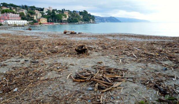 legna-in-spiaggia_1-620x360