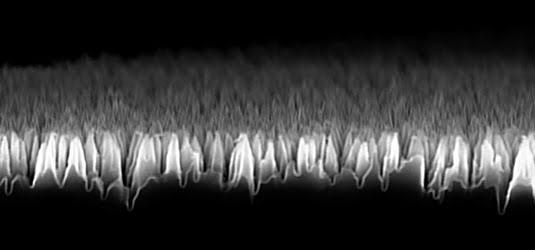 SEMRIE_Black_Silicon_Image_Wiki_Materialscientist