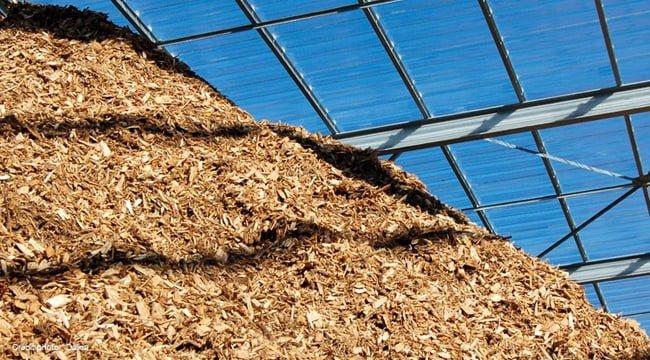 biomassa_cella_a_combustibile