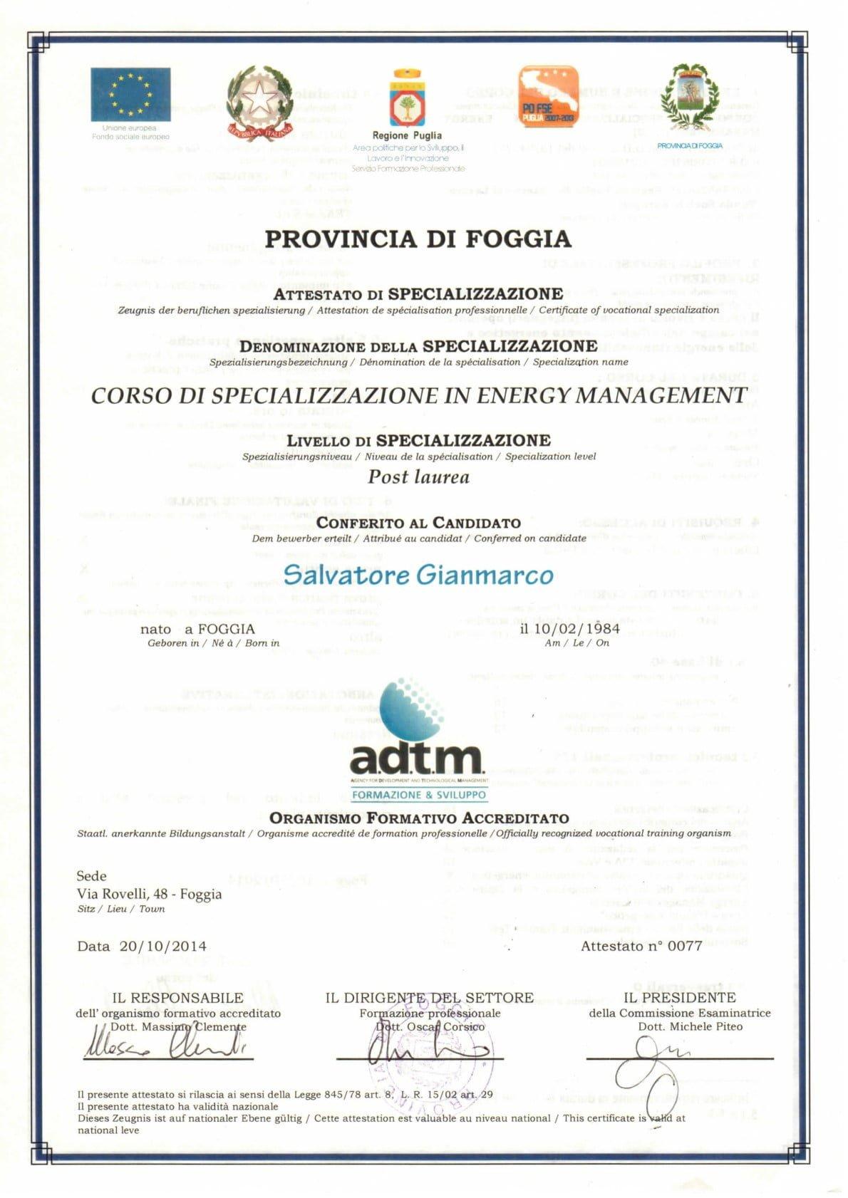 Specializzazione in Energy Management