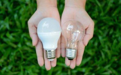 Lampadine a LED, alogene e a basso consumo: differenze e ...